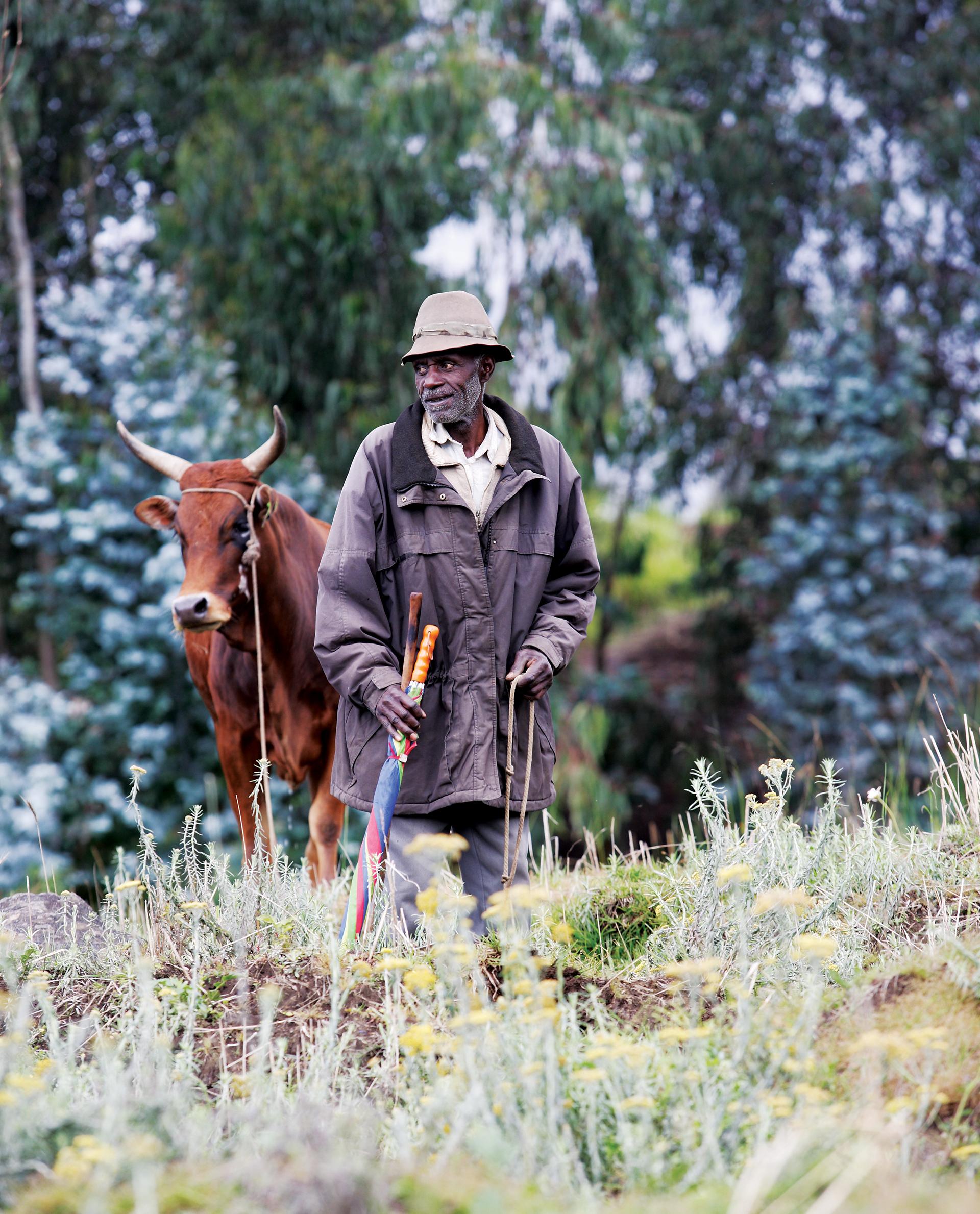 Photo of a Rwandan shepherd for the 'Visa in Rwanda' brochure