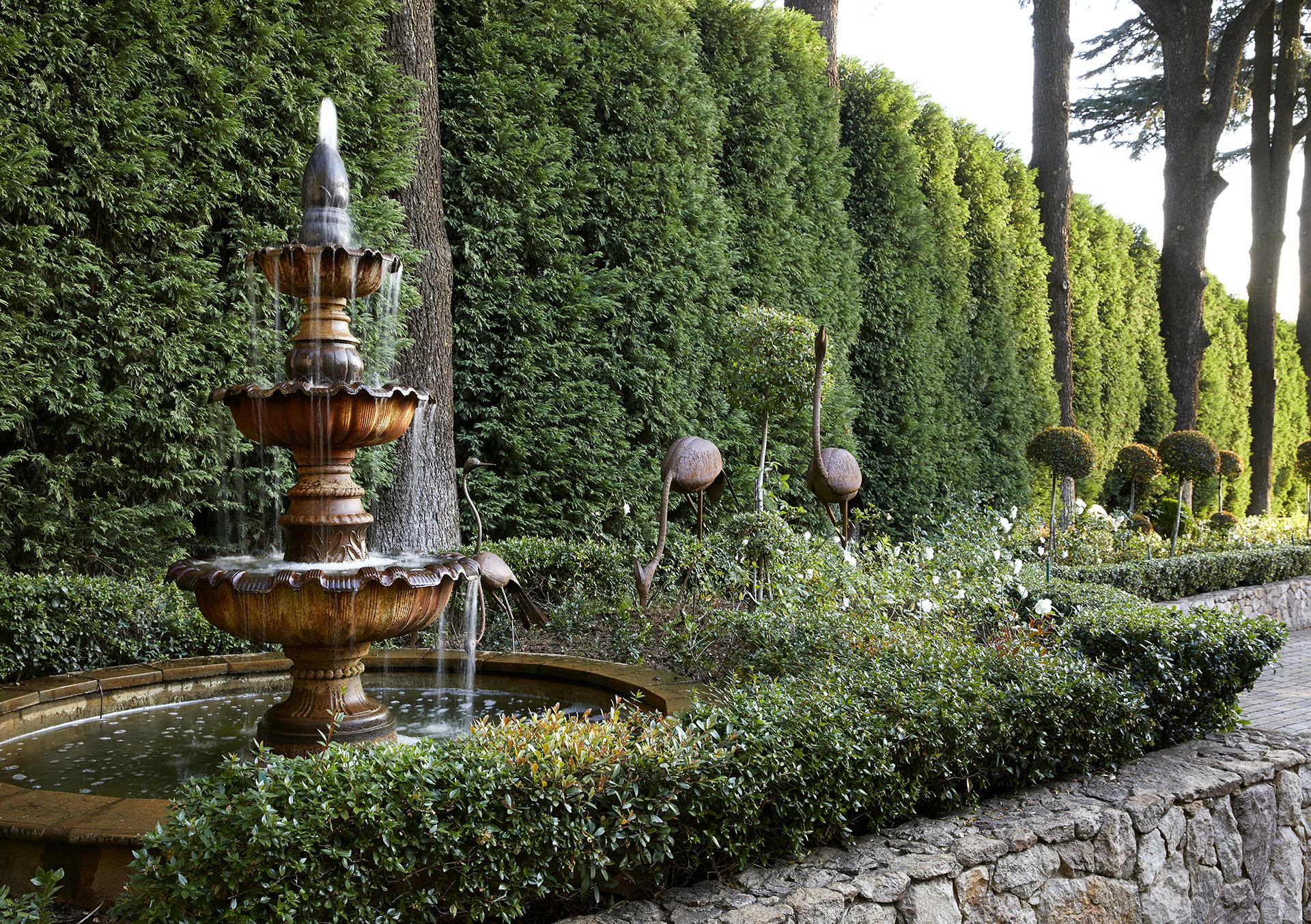 A typical Young Garden Design garden.